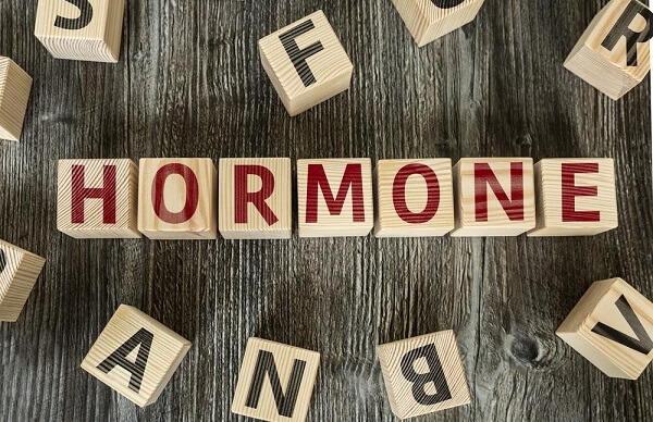 Growth hormone is the main hormone that controls all organs and functions in the body
