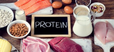 Protein and its effect on human growth
