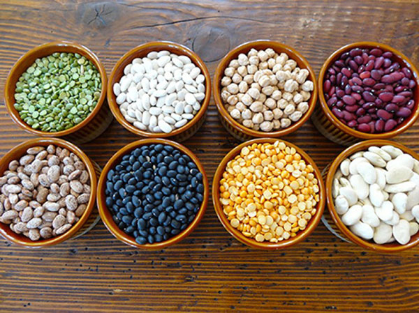 Beans contain relatively high calcium content.